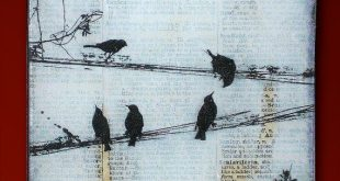 Black Birds on a Wire Handmade Glass and Wood Wall Blox from Upcycled Dictionary page book art - WilD WorDz - Carriers of the Word 3 of 4
