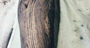 50 Holzschnitzerei Tattoo Designs für Männer – Maskulin Ink Ideas