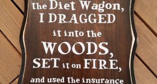 Not only did I fall off the Diet Wagon Wood Sign, Kitchen Humor, Funny Sayings, ...